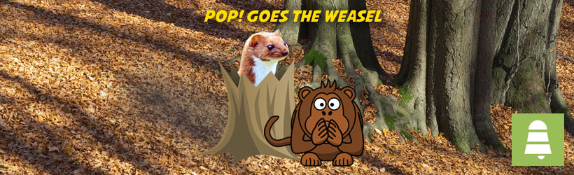 how to play pop goes the weasel