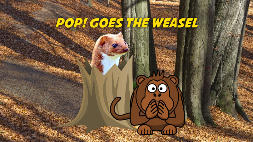 Pop Goes the Weasel | Free Nursery Rhymes