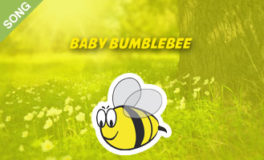 Baby Bumblebee [SONG]