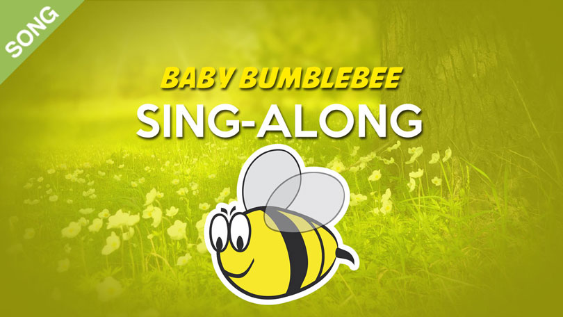 Baby Bumblebee Song Download